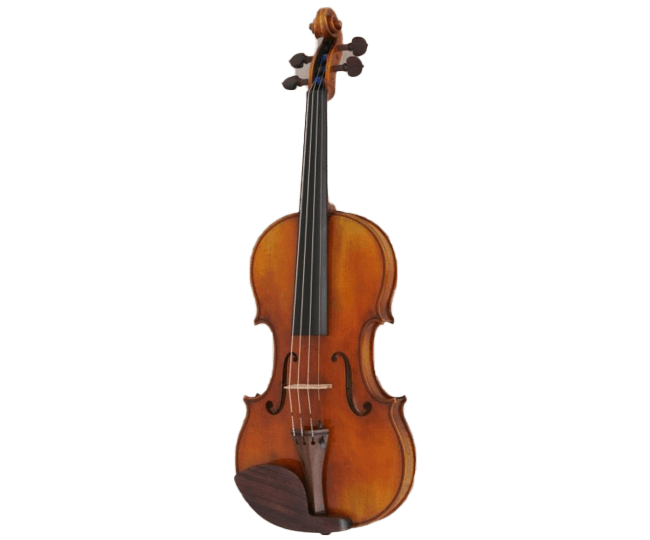 Master Violin - Mauro Franconi