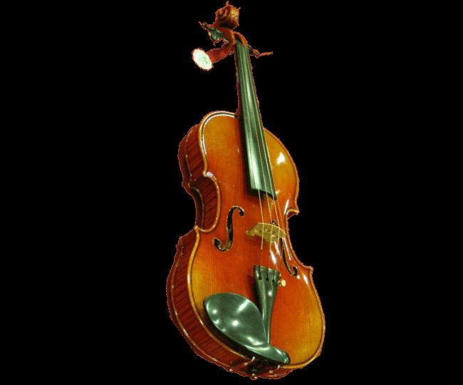 Ernst Heinrich Roth Master Line Violin